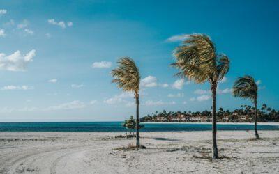 11 opmerkelijk feitjes over Aruba