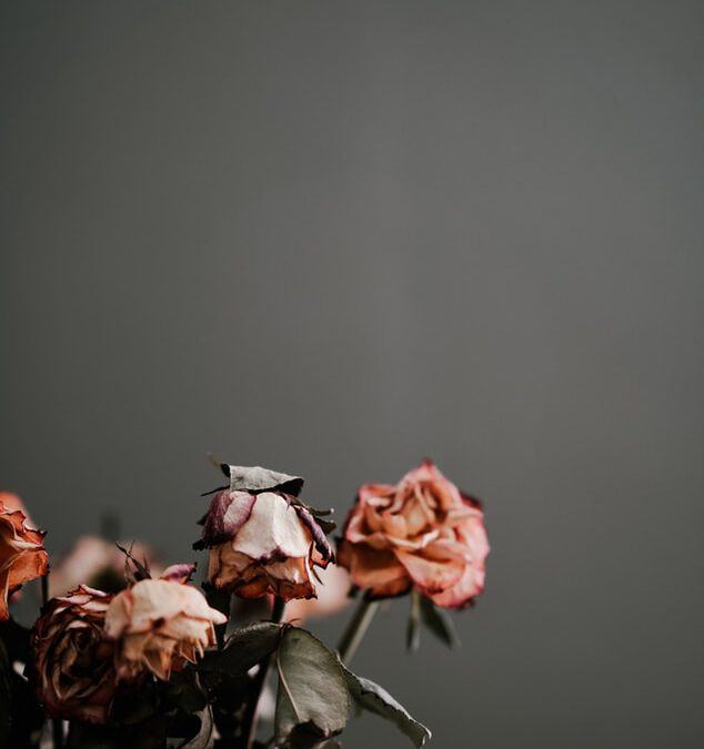 'De dood' – Yvonne de Pan